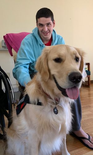 Individual and therapy dog